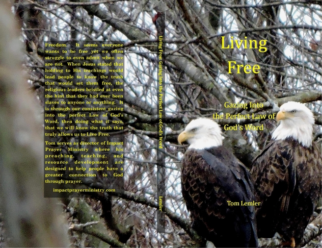 Living Free cover (eagle 2)