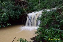 March Fork Falls